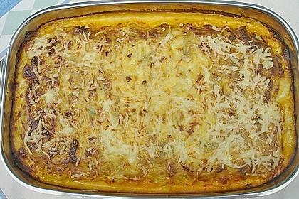 Spinat - Bolognese - Lasagne 15