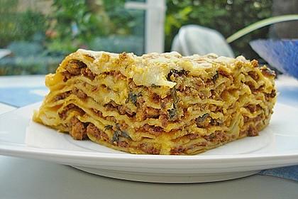 Spinat - Bolognese - Lasagne