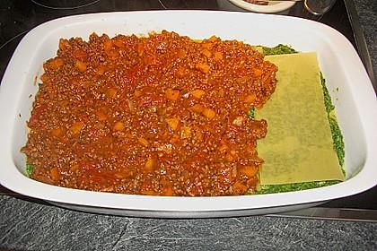 Spinat - Bolognese - Lasagne 12