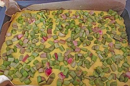 Rhabarberkuchen 12