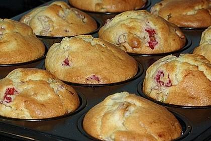 Rhabarber - Muffins 19