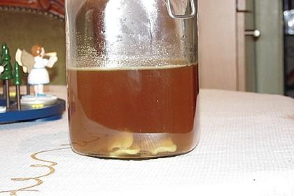 Köstlicher Ingwer - Likör 1