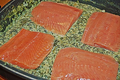 Lachs - Spinat - Nudeln 9