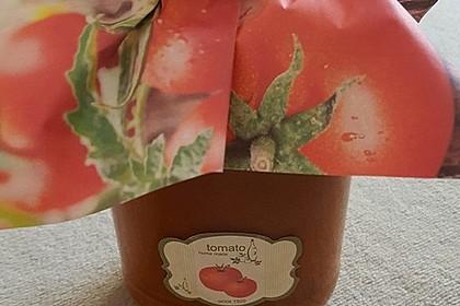 Tomatensoße auf Vorrat 31