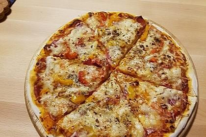 Italienischer Pizzateig 121