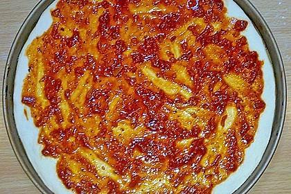 Italienischer Pizzateig 246