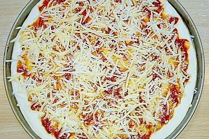 Italienischer Pizzateig 358