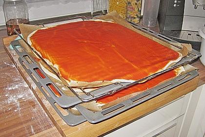 Italienischer Pizzateig 249