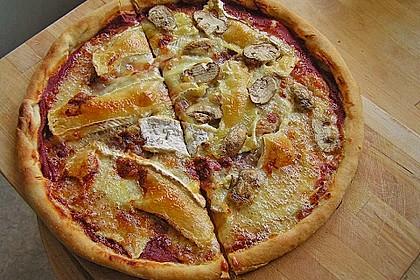 Italienischer Pizzateig 42