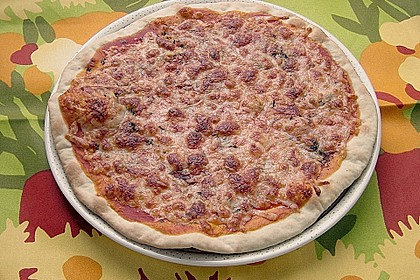 Italienischer Pizzateig 238