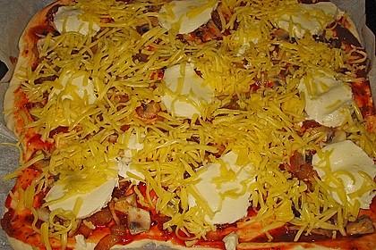 Italienischer Pizzateig 208