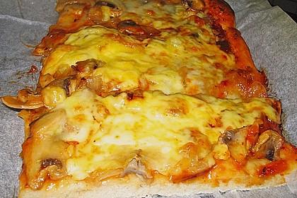 Italienischer Pizzateig 299