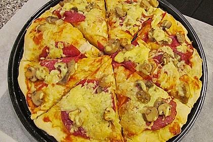 Italienischer Pizzateig 103