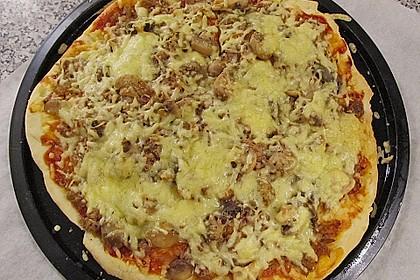 Italienischer Pizzateig 203