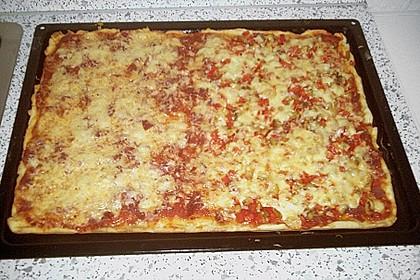 Italienischer Pizzateig 290