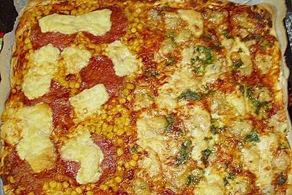 Italienischer Pizzateig 334