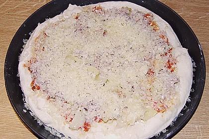 Italienischer Pizzateig 320