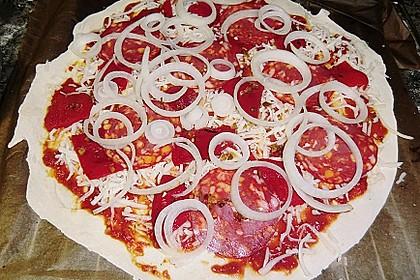Italienischer Pizzateig 283