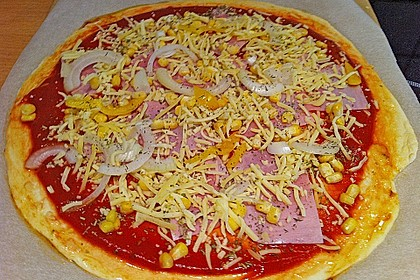 Italienischer Pizzateig 167