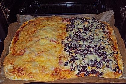 Italienischer Pizzateig 222
