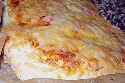 Italienischer Pizzateig 165