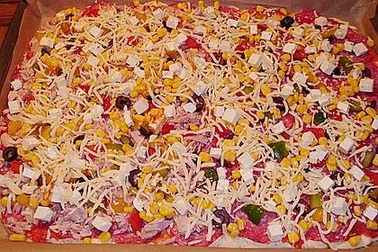 Italienischer Pizzateig 266