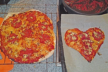 Italienischer Pizzateig 220