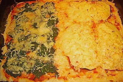 Italienischer Pizzateig 264