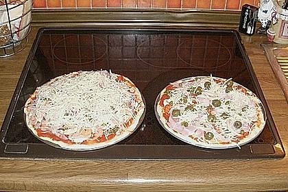 Italienischer Pizzateig 276