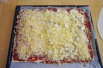 Italienischer Pizzateig 245