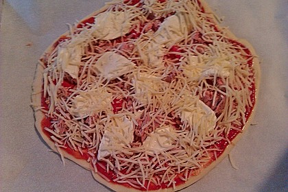 Italienischer Pizzateig 296