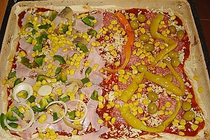 Italienischer Pizzateig 149