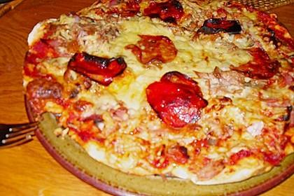 Italienischer Pizzateig 333