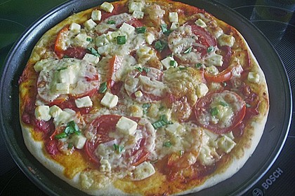 Italienischer Pizzateig 201