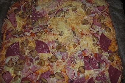 Italienischer Pizzateig 317
