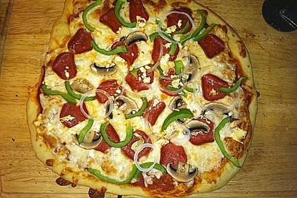 Italienischer Pizzateig 240
