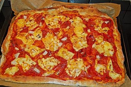 Italienischer Pizzateig 152