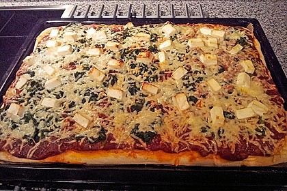 Italienischer Pizzateig 255