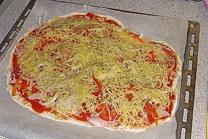 Italienischer Pizzateig 207