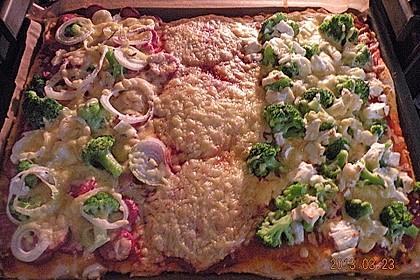 Italienischer Pizzateig 260
