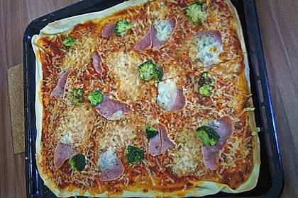 Italienischer Pizzateig 325