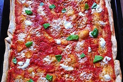 Italienischer Pizzateig 147