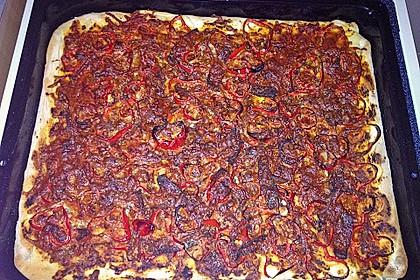 Italienischer Pizzateig 307