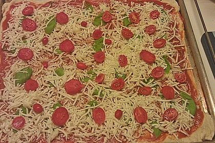 Italienischer Pizzateig 212