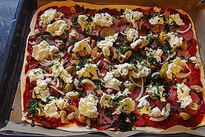 Italienischer Pizzateig 102