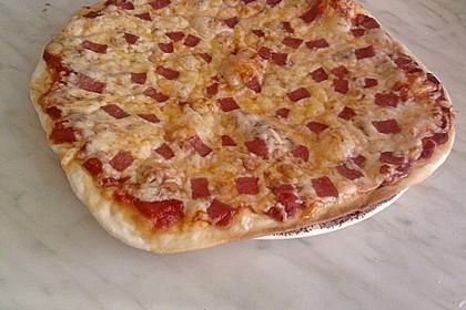 Italienischer Pizzateig 273