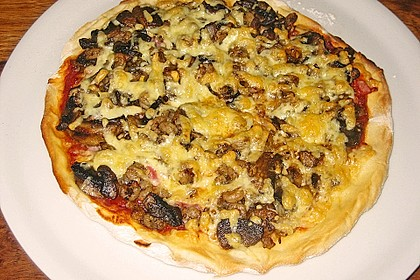 Italienischer Pizzateig 237