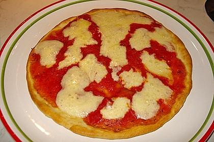 Italienischer Pizzateig 258