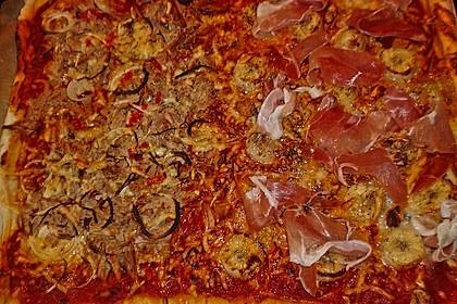 Italienischer Pizzateig 176