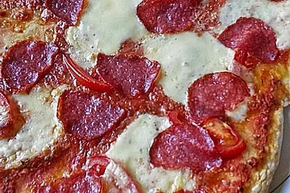 Italienischer Pizzateig 146